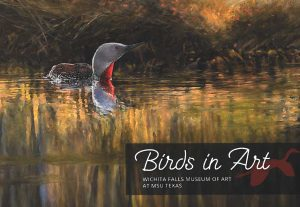 Birds In Art Exhibition @ Wichita Falls Museum of Art at MSU